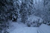 Raahe Winter 56