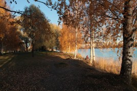 Joensuu Oct18_35