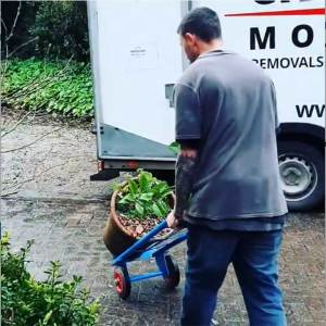 careful removals in Cornwall