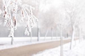 snijezni pokrivac