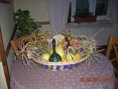jesenska kosarica 1