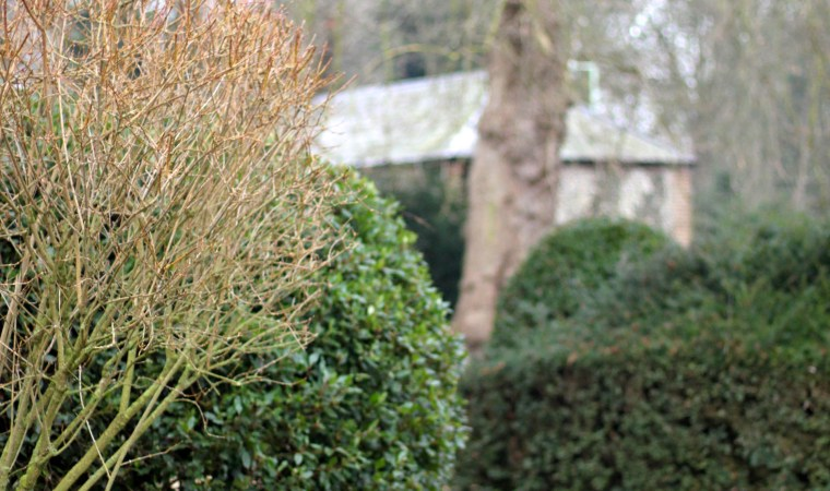 Garden-Topiary