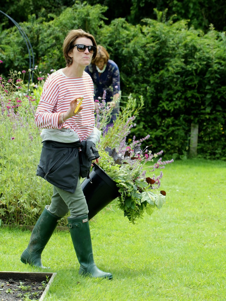 Foraging-For-Flowers.jpg
