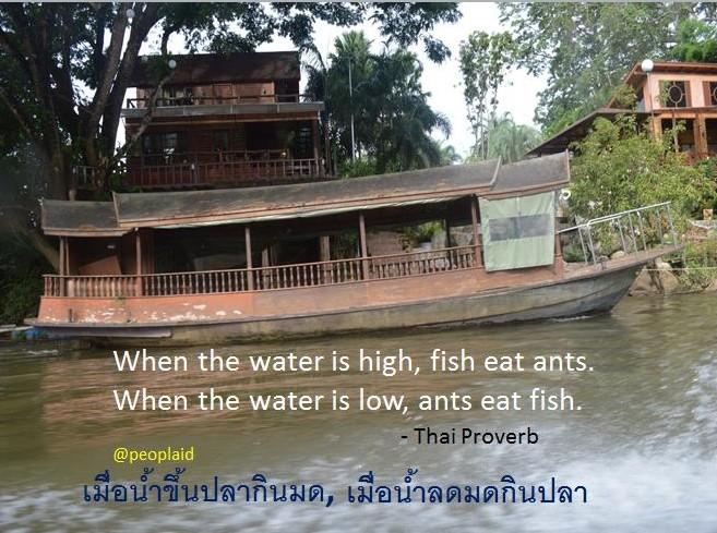 1 Fish eat ants