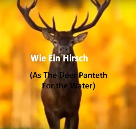 As The Deer Panteth...German Version Lyrics
