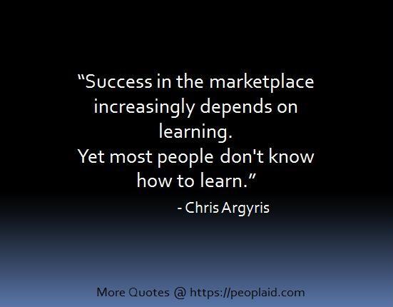 Chris Argyris Quotes