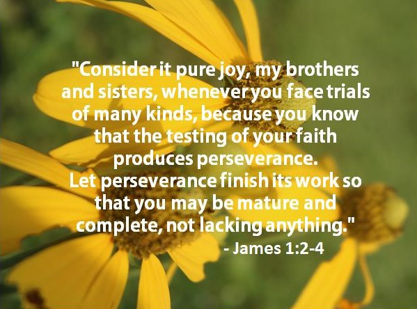 Bible Verse for Today February 8