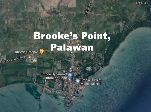 Brooke's Point in Palawan