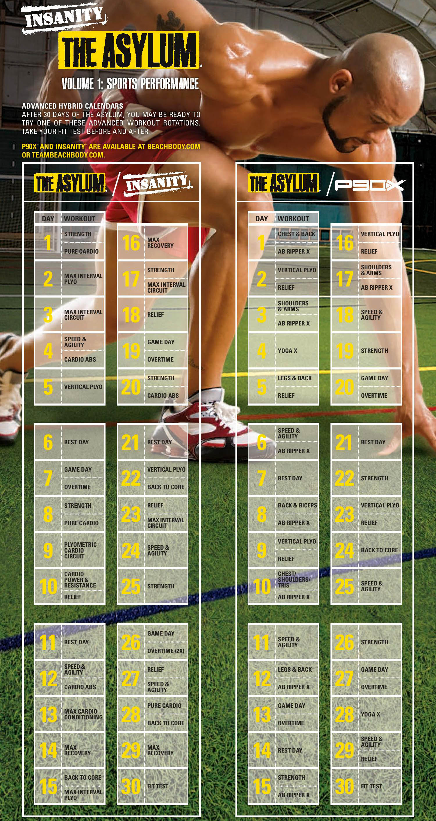 P90x Chest And Back Worksheet