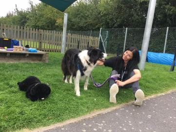 Jennie Docherty, Animal-Assisted Intervention Programme Support, combines a career in SEN education, work as a therapist, with a passion for companion animals. Jennie is now an integral part of the team, where she can combine her skills as a therapist with her passion for animals.