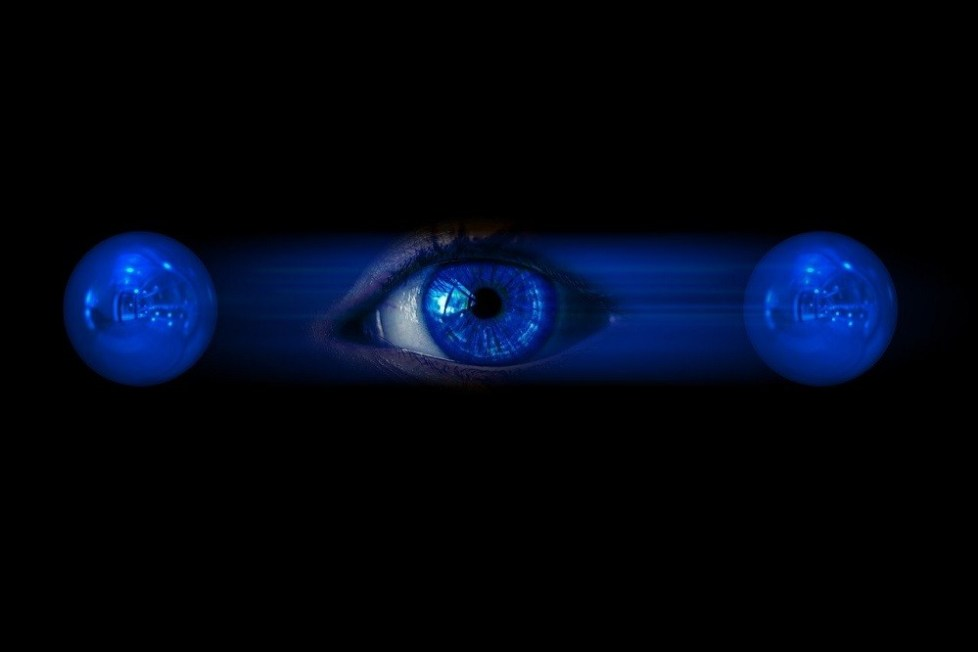 How Your Perception Creates Your Reality - People Development Network