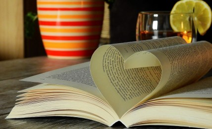 How To Help Your Team To Love Learning - People Development Network