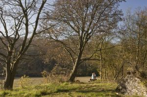 Walkers enjoying the autumn view, bottom of Birch Wood, Plantlife Reserve at Ranscombe Farm, Kent.