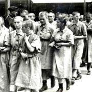 Οι εγκληματικές πράξεις φαρμακευτικής εταιρέιας που αγόραζε γυναίκες από το Άουσβιτς