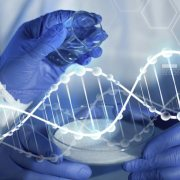 Η Ιαπωνία θα επιτρέπει τη επεξεργασία γονιδίων σε ανθρώπινα έμβρυα.