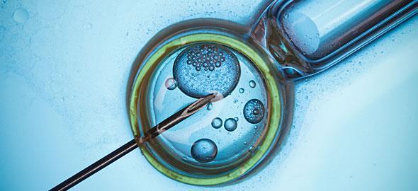 Το 70% αγγίζει το ποσοστό εγκυμοσύνης και γέννησης υγιών παιδιών με εξωσωματική