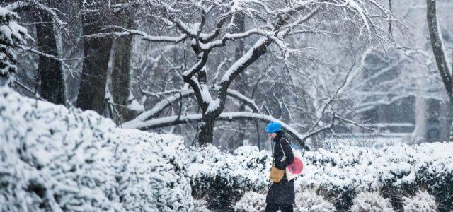 Νέα Υόρκη: Χιόνια και πολικές θερμοκρασίες Μάϊο μήνα