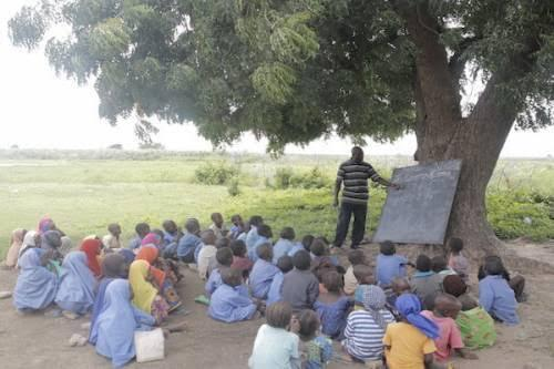 pupils-learn-under-trees-in-gombe