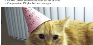 Craigslist Cat Birthday Party