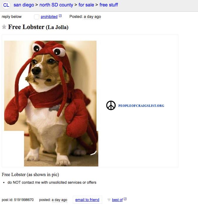 craigslist lobster