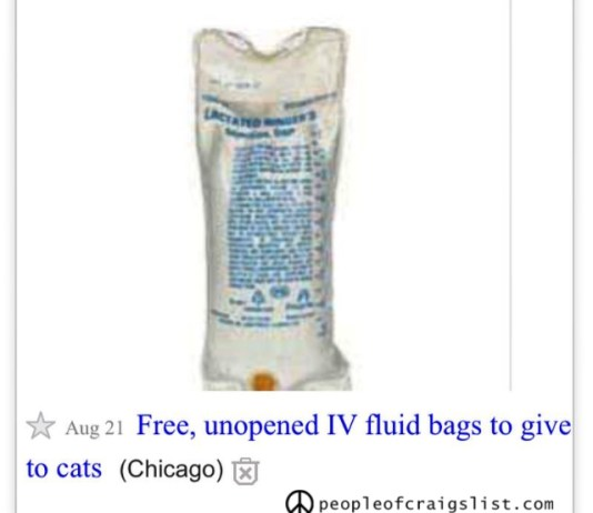 unopened IV fluid bag to give to cats