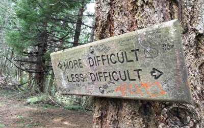 Decision Making: The Tough Part of Leadership Development in Organisations (Part Two)