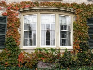 The Perks & Quirks of the Bay Window