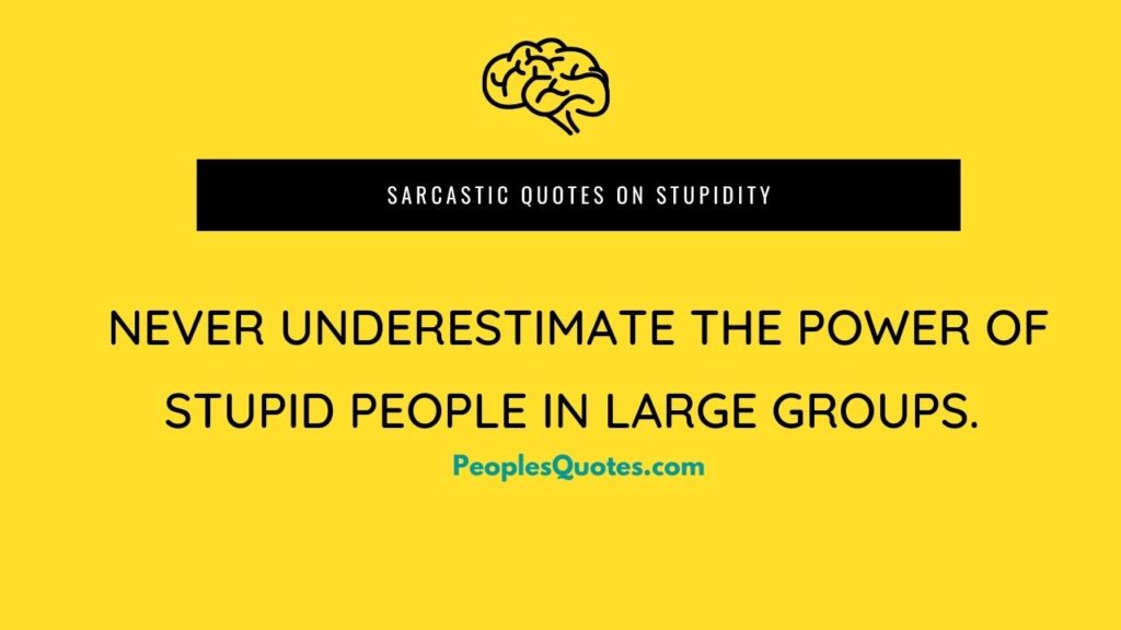 Sarcastic-quotes-on-Stupidity