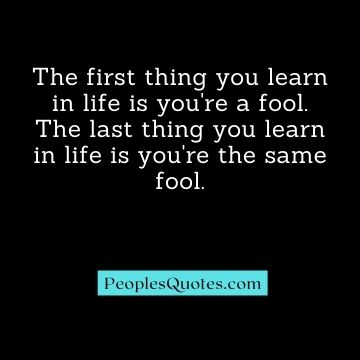 Sarcasm quotes on stupidity