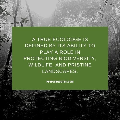 protecting biodiversity quotes