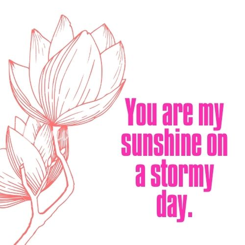 Short You are my sunshine picture quotes