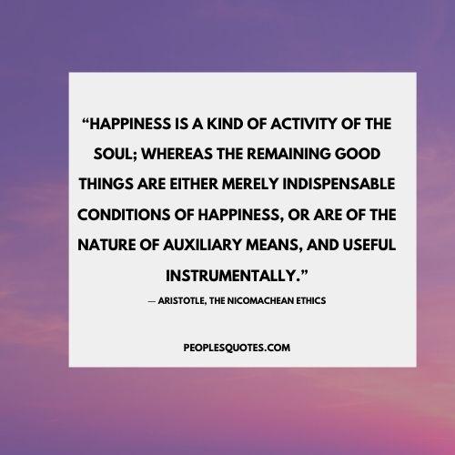 Aristotle on happiness Nicomachean ethics