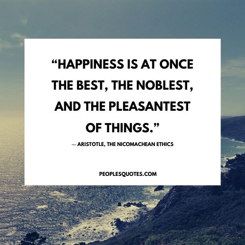 Aristotle and happiness Nicomachean ethics