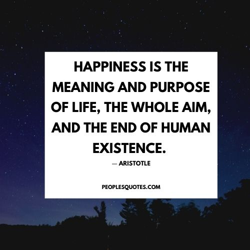 aristotle happiness image quotes