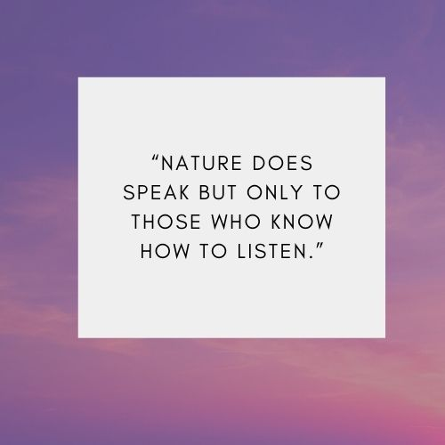 Best Short Quotes about Nature