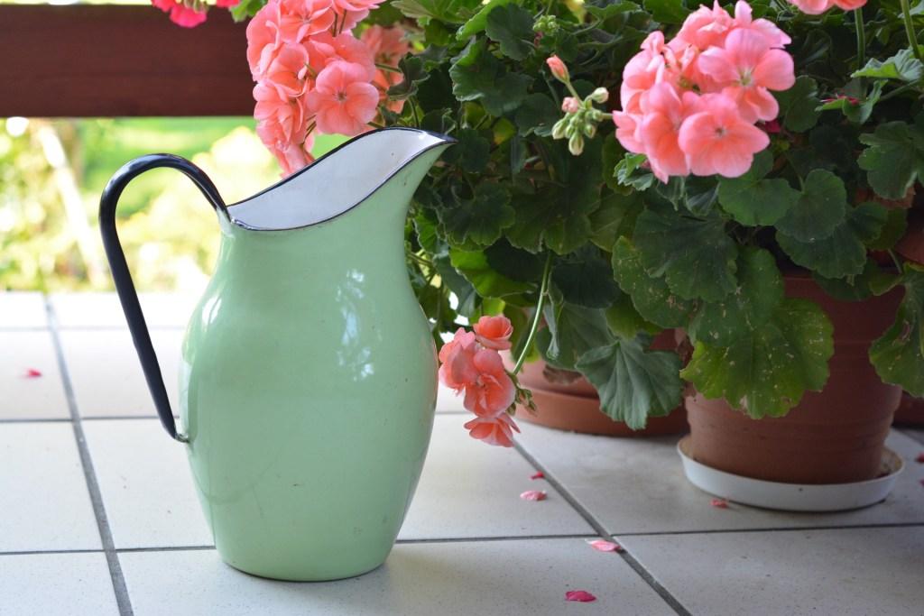 Cuidar plantas interior jarra verde claro junto a macetas con flores