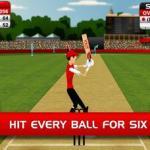 Stick Cricket iPad Stick Cricket_0
