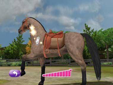 Pony Friends 2 Nintendo DS Pony Friends 2_4