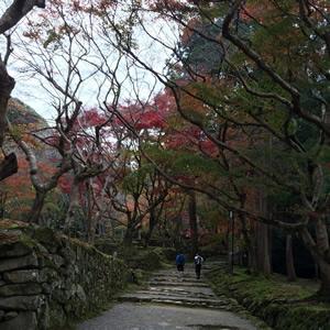 穏やかな滋賀の寺