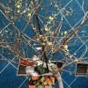春の訪れを感じる…小田急線の駅のロウバイとODAKYU VOICE