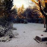 Diciembre, ¿qué está pasando en el Jardín?