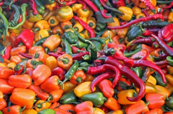 Olio Piccante peperoncini