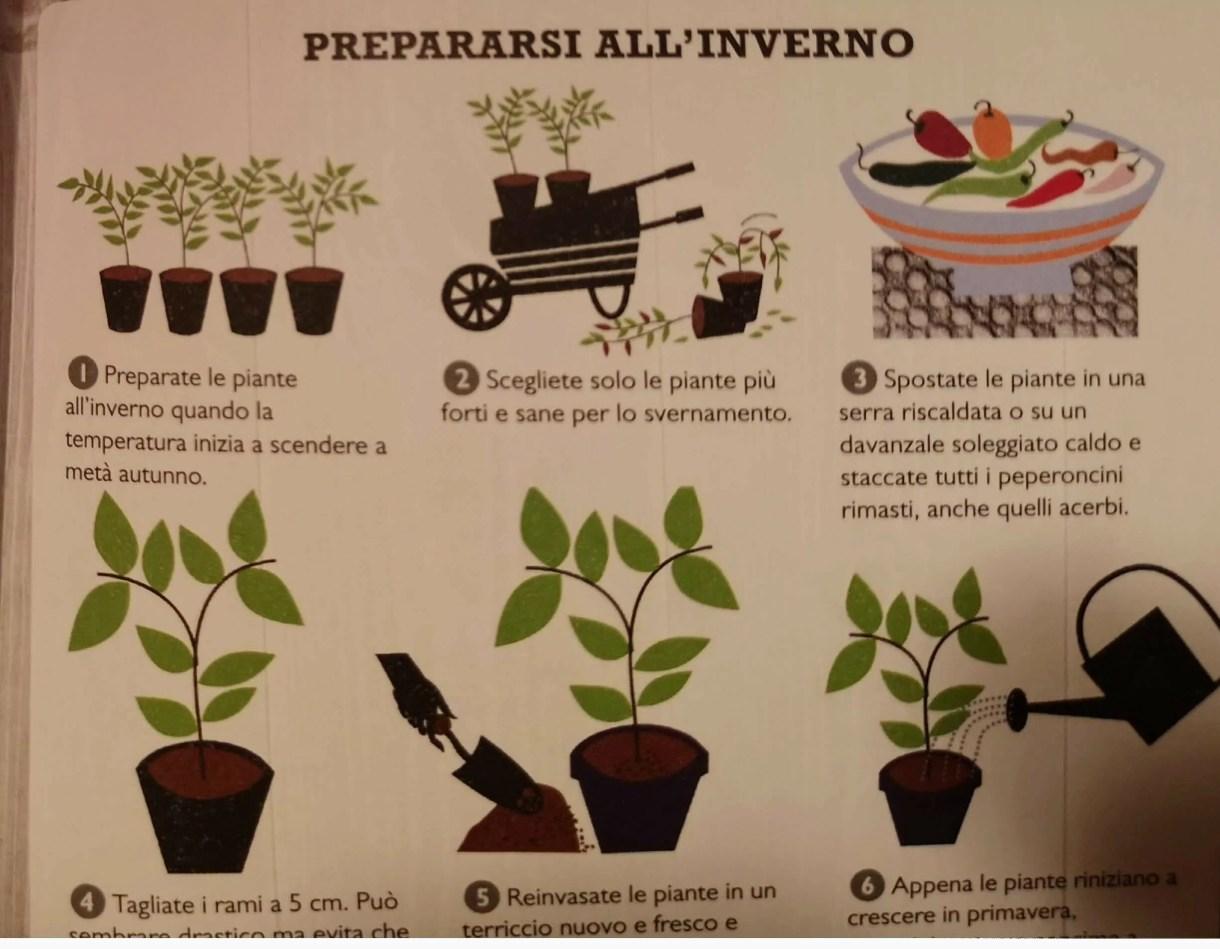 libro consigli coltivazione per l'inverno