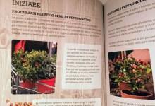 libro sui peperoncini coltivazione ricette