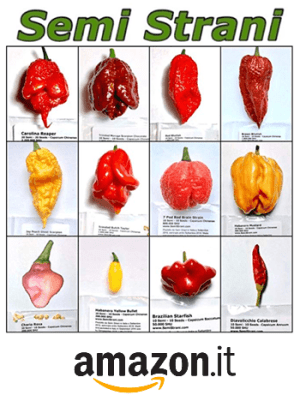 amazon semi peperoncini strani