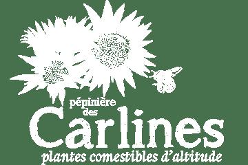 Pépinière des Carlines