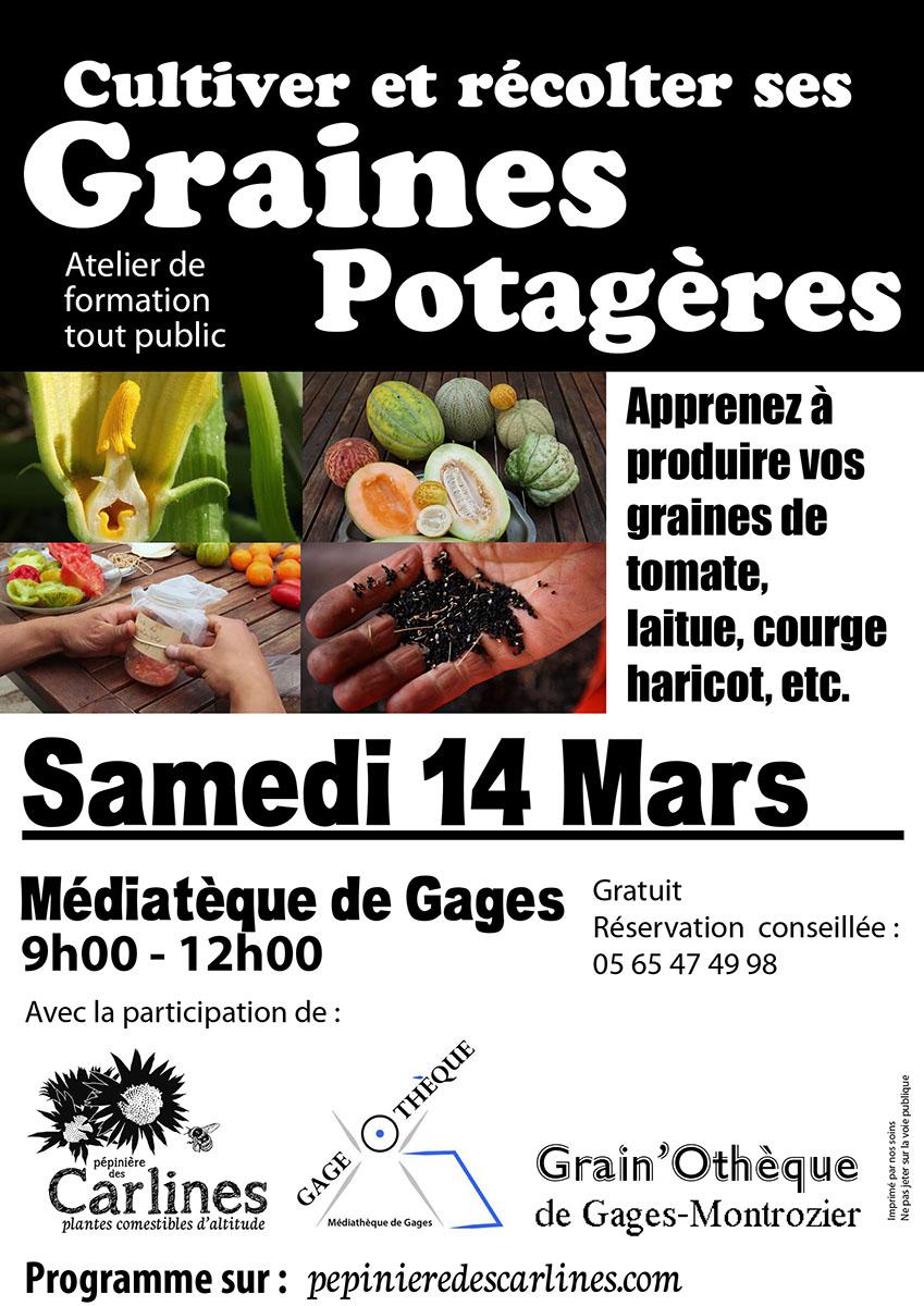 Potager Légumes Plantes Ancienne 80 Graines AUBERGINE LONGUE VIOLET FONCÉ