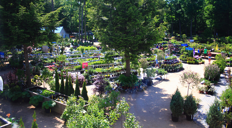 Section-centre-jardin-Pepiniere-Villeneuve
