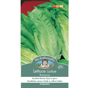 Laitue Romaine – Mr.Fothergill's