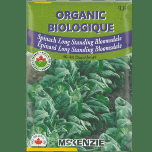Épinard Long Standing Bloomsdale – McKenzie